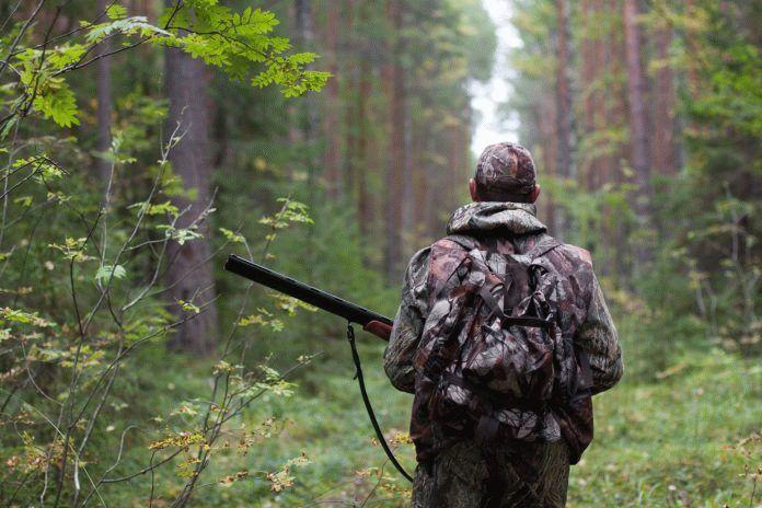 Незаконная охота ук РФ \ Акты, образцы, формы, договоры ...
